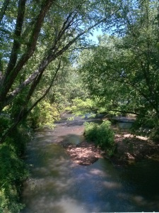 Chestatee River